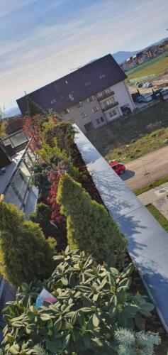 Amenajare terasa, Brașov